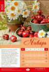 Календарь настенный перекидной на пружине эконом 34*50 см. на 2020 год «Слова надежды»